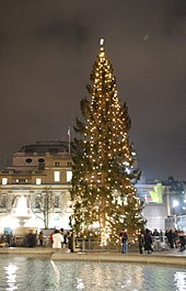 Trafalgar_Square_Christmas_tree8